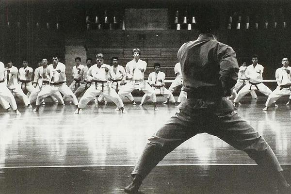 Mengenal Lebih Dekat 4 Jenis Aliran Karate di Dunia